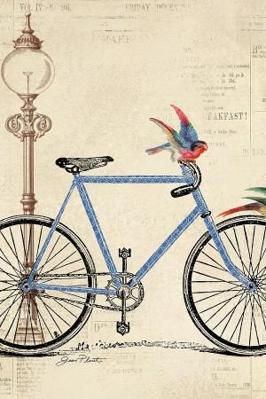 vintage-bike-b-jean-plout